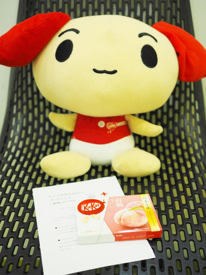 ネスレ日本株式会社様から日本赤十字社へキットカットの寄贈